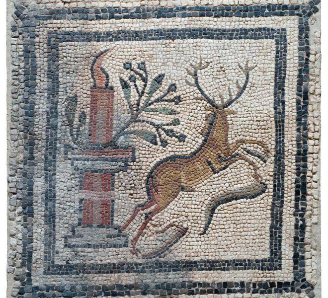 Fortunatus (3)