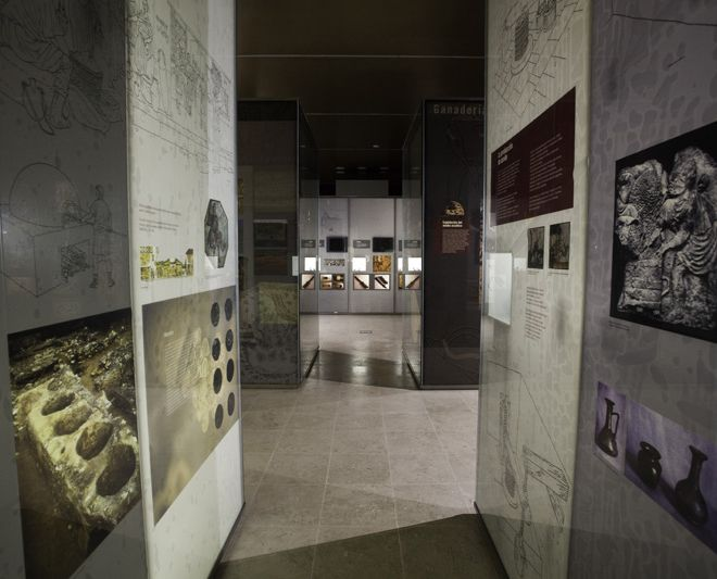 MUSEO DE LAS VILLAS ROMANAS DE ALMENARA PURAS.